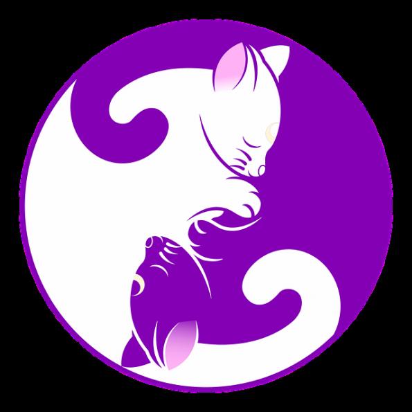 cat-1539610_640